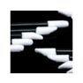【PERFECT LASH】Lash stick(100本) 2