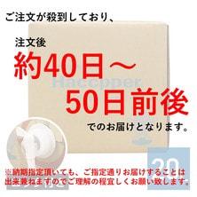 Haccpper ハセッパー(高精度次亜塩素酸水)20L