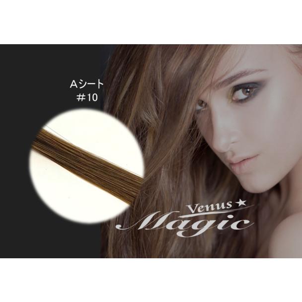 【VENUS COSME受講者】Aタイプ  (2本 500本) 10