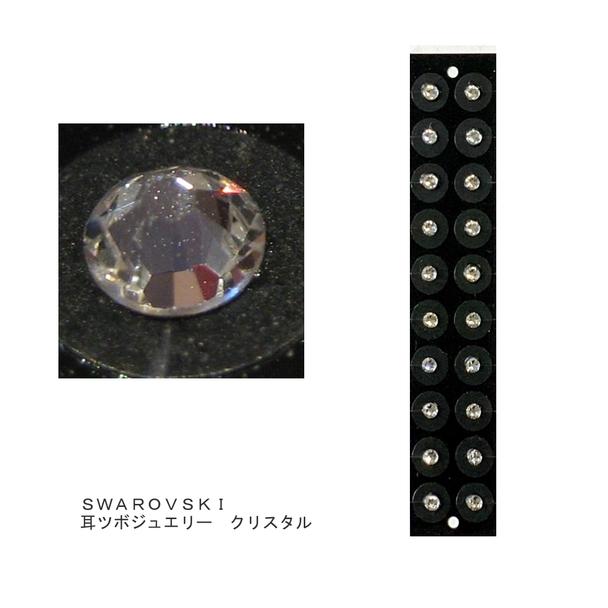 【受講者】トルマリン耳ツボジュエリーSS9  クリスタル 1