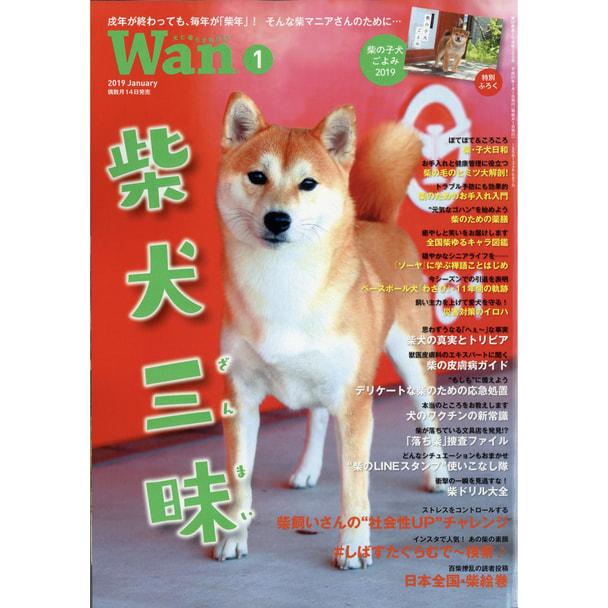 【定期購読】Wan (ワン) [偶数月14日・年間6冊分]