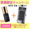 【AIVIL】 パーフェクションアイラッシュグルー 5g ラッシュセット 1