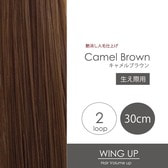 2-camel-brown.jpg